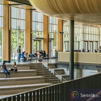 Uniwersytet (szkoła wyższa)