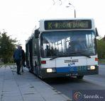 Autobus