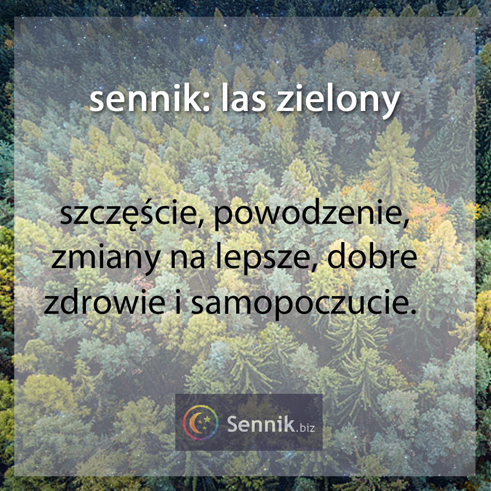 sennik las- las zielony
