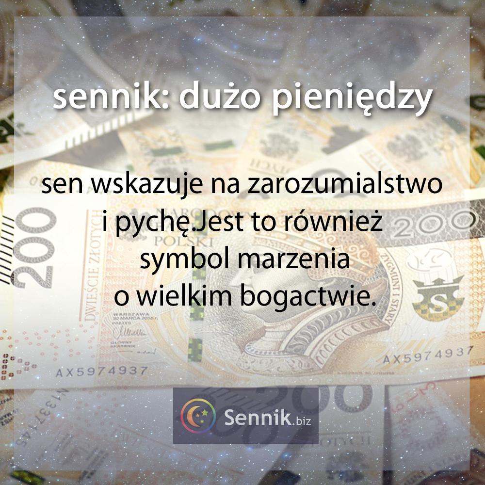 sennik pieniądze - dużo pieniędzy