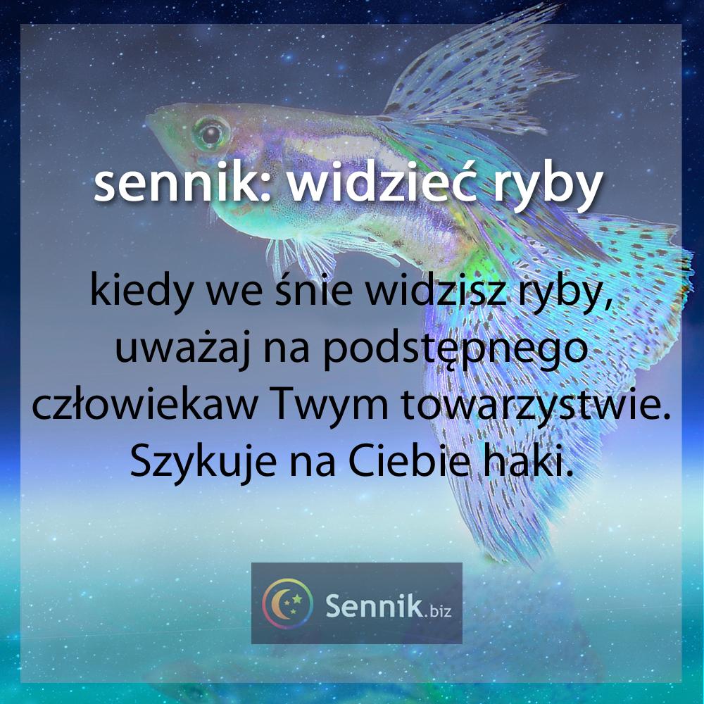 Serwisy randkowe zambia online