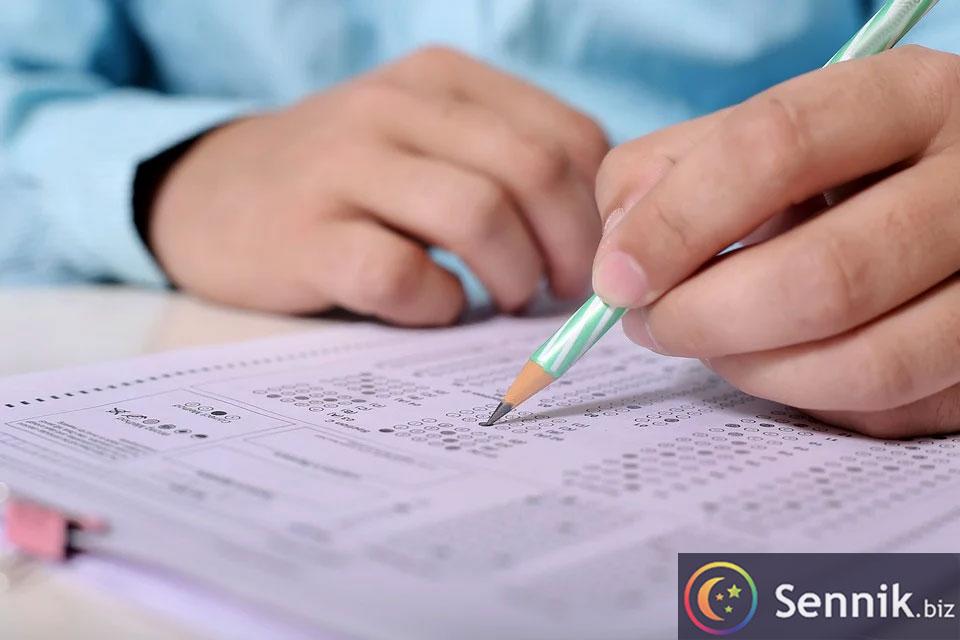 egzamin sennik