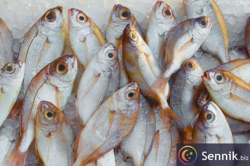 ryby sennik